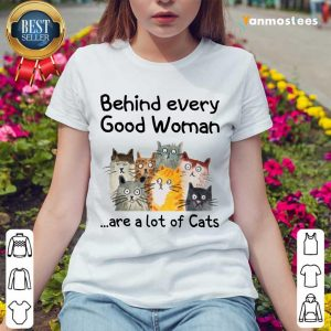 Behind Every Good Women Are A Lot Of Cats Ladies Tee