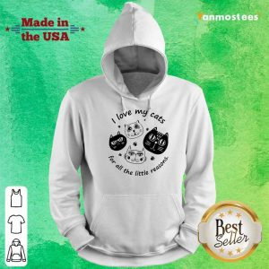 I Love My Cat For All The Little Reasons Hoodie