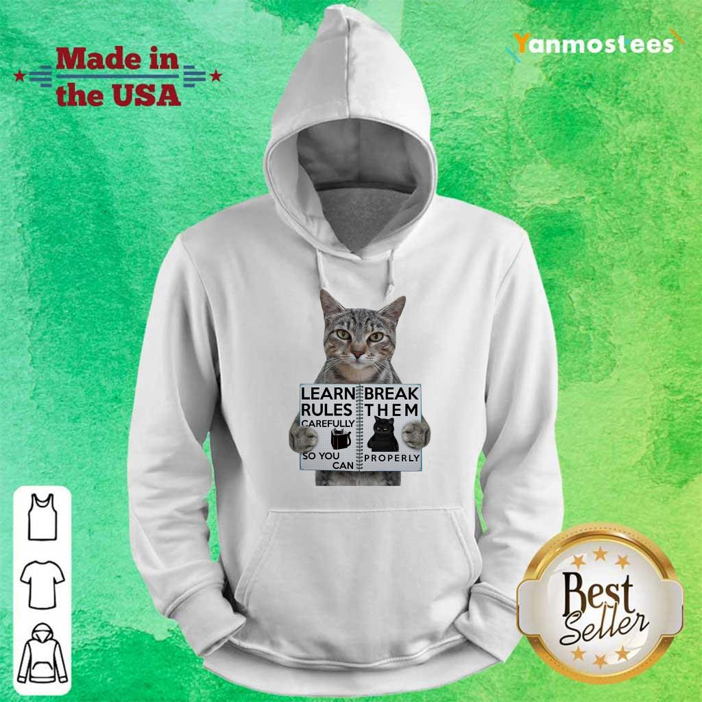 Cat Learn Rules Carefully So You Can Break Them Properly Hoodie