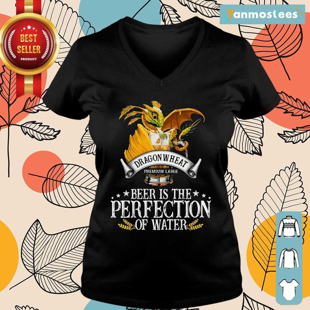 Dragon Wheat Premium Large Beer Is The Perfection Of Water Ladies Tee