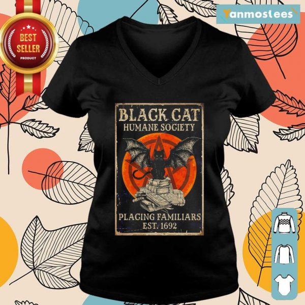 Witch Black Cat Humane Society Placing Familiars Est 1692 Sunset Ladies Tee